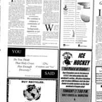 2.20.1998 diversity, the blind crusade.pdf